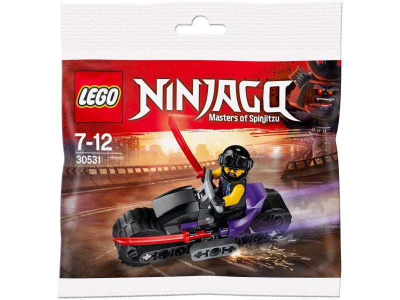 LEGO Ninjago 30531 Zonen van Garmadon